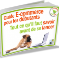 ebook-guide-debutant-ecommerce-800